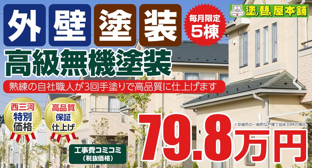 高級無機塗装 79.8万円