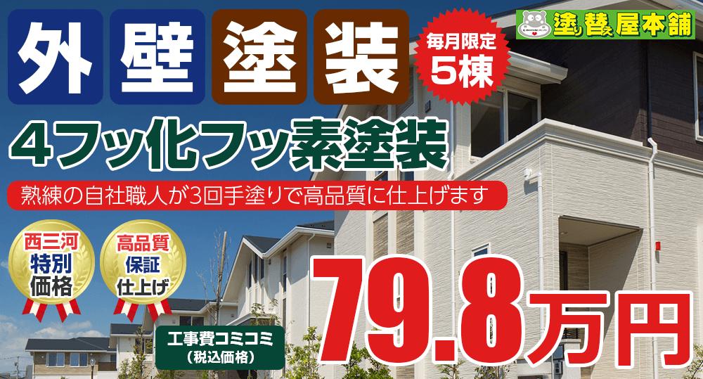 4フッ化フッ素塗装 79.8万円